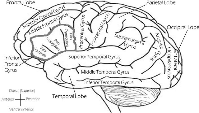 bipolar stigma